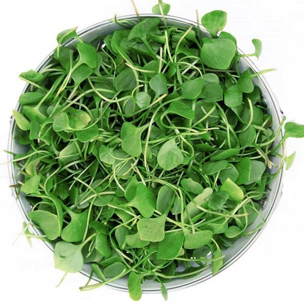 insalata di crescione