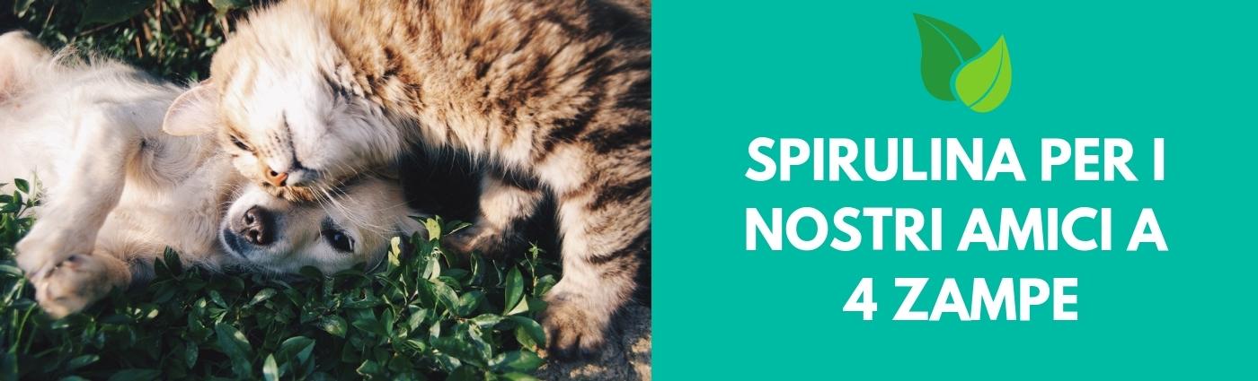 spirulina per cani e gatti benefici